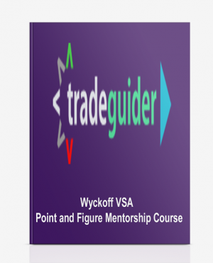 Wyckoff VSA – Point and Figure Mentorship Course